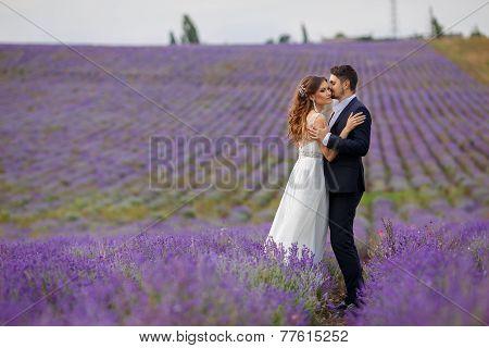 Wedding walk on a field of lavender.