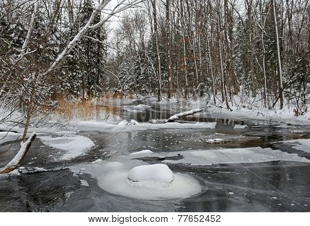 Winter wilderness scene