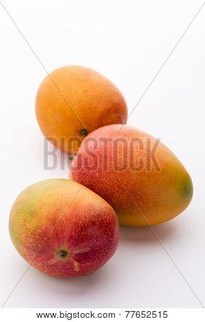 Three Ripe Mangos, Mangifera Indica, On White