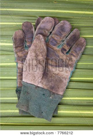 Old Gardening Gloves