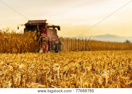 Harvester Working In Background On Corn Field