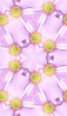 A seamless pattern background made out of a Japanese Anemone background. poster
