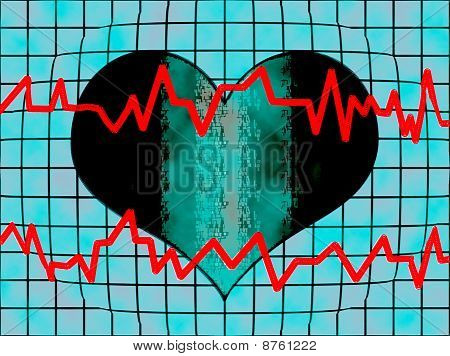 Dynamics of the Heart