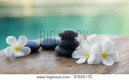 White frangipani with black stones, spa settings