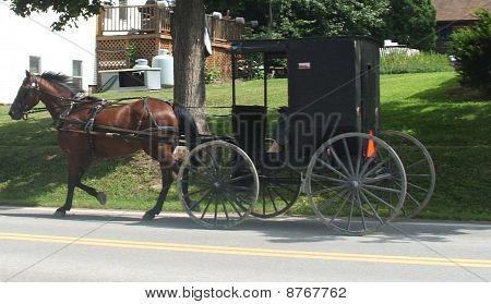 Pferdewagen und buggy