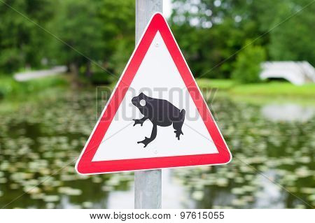 Traffic Sign Attends For Frog Migration, Pond On Background