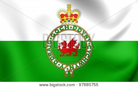 3D Flag of Wales (1953-1959). Close Up. poster