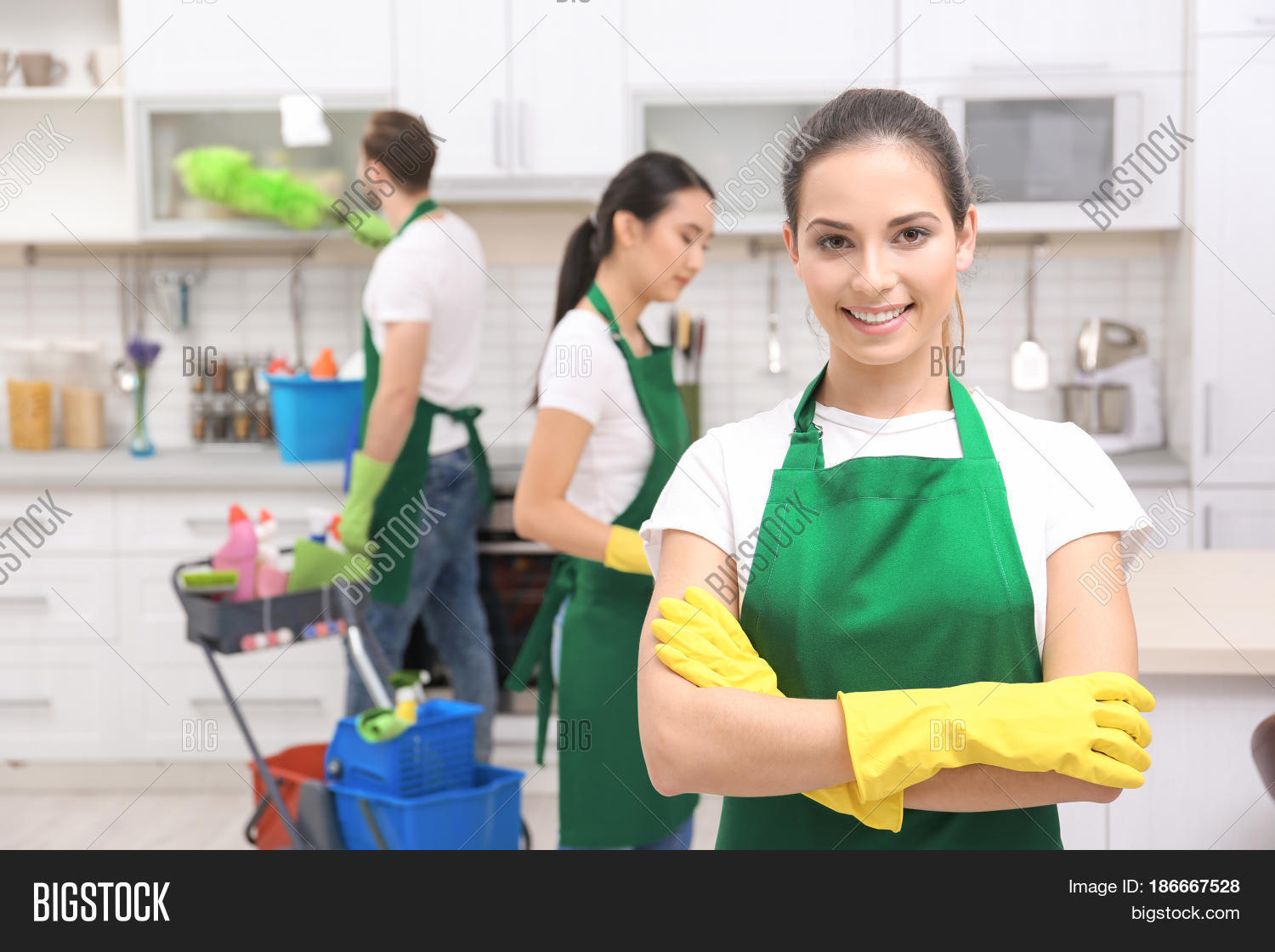 Top 5 Home Cleaning Companies by Homearena
