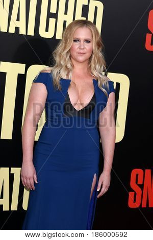 LOS ANGELES - MAY 10:  Amy Schumer at the
