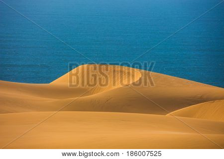 Atlantic coast of Namibia, south of Africa. Gorgeous and dangerous jeep - safari through the huge sand dunes on the ocean coast. The concept of exotic and extreme tourism