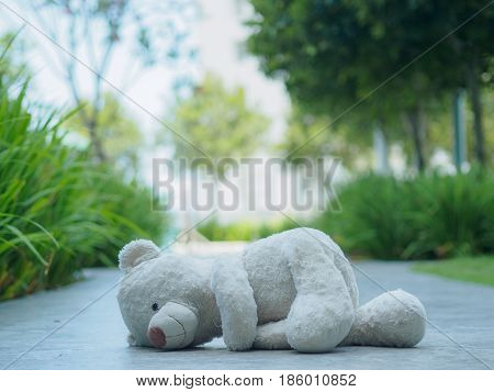 Lonely Teddy Bear sleeping on the walk way or road (Concept about love)