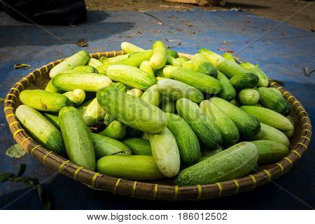Pile of cucumber on bamboo webbing on sale at traditional market photo taken in Bogor Indonesia java