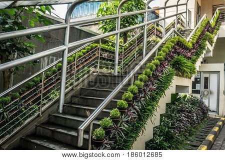 Vertical garden with colourful plants on handle of upstairs photo taken in Jakarta Indonesia java