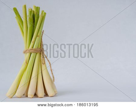 The Lemongrass slice (citronella) on white background.