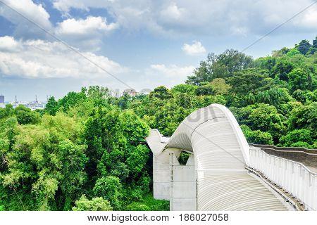 Amazing View Of Bridge Imitating A Wave, Singapore