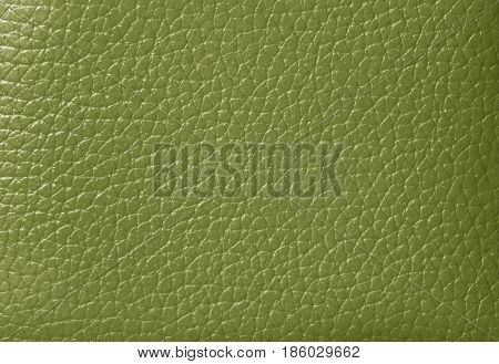 Texture of Olive Green Colored Genuine Leather, Closed up for Background