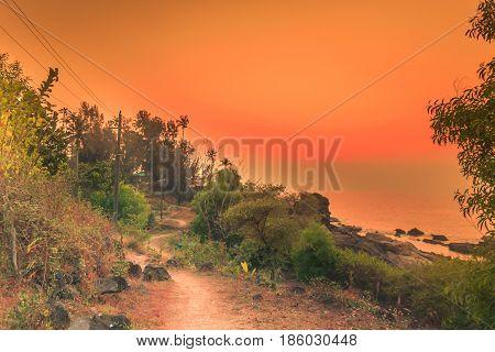Classic Wayfarers at Sunset in Orange and black