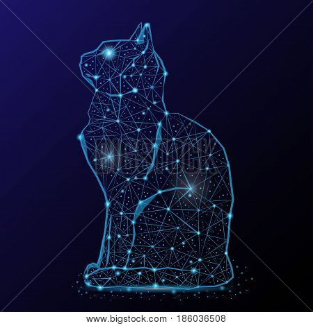 Abstract image of a cat in the night sky and space. Consisting of points and lines.