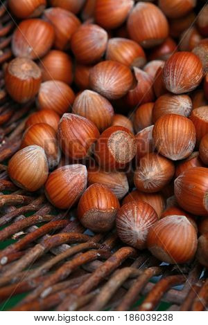 Whole Big Filbert Hazelnuts In Wicker Basket