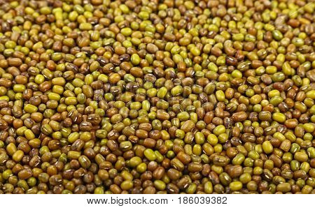 Green Mung Beans Close Up Background