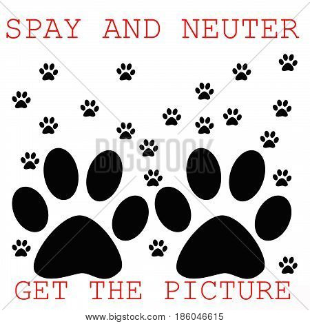 spay and neuter poster paw prints on white illustration