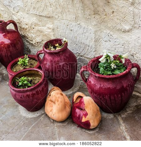 Ceramic red flower pots near wall with plants