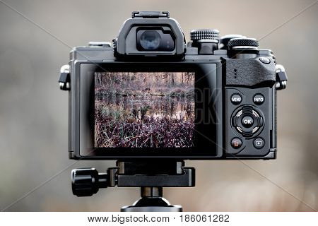 Back of a camera with picture in the display