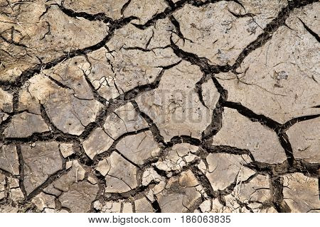 drought, ecology and environment concept - dry cracked ground surface