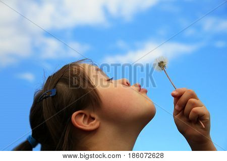 Little girl blowing the dandelion in the park.