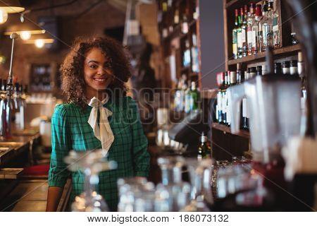 Portrait of beautiful female bar tender standing at bar counter