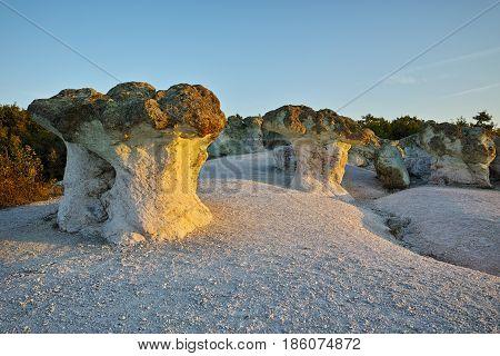 Stone Mushrooms colored in yellow from Sunrise near Beli plast village, Kardzhali Region, Bulgaria