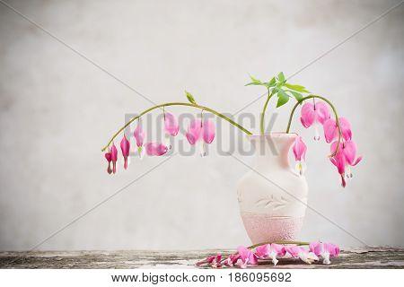 the bleeding heart flowers in a vase
