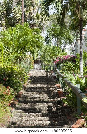 Stone stairs surrounded by tropical nature in Charlotte Amalie town on St. Thomas island (U.S.Virgin Islands).
