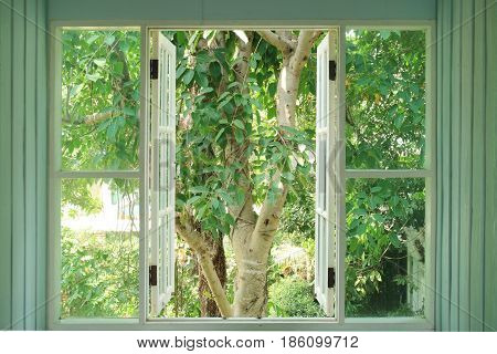 Old vintage objects wood concept. Old vintage window opening and see the nature view.