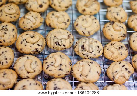 A lot of cookie in the market