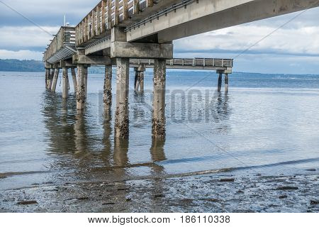 A view from beneath the pier at Dash Point Washington. The tide is low.