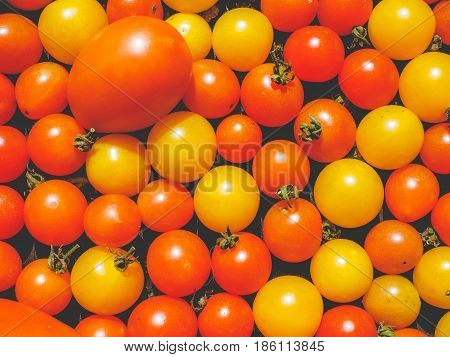 Cherry Tomato Vegetables Background, Faded Vintage Look