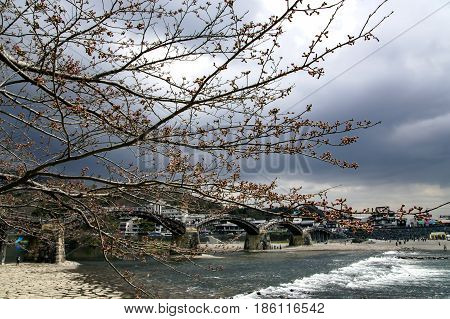 JAPAN, IWAKUNI, APRIL, 03, 2017 - Branches of cherry blossoms against the background of the Old Kintai Bridge, unique wooden arch bridge on stone pillars spanning a river Nishiki in the city of Iwakuni, at Yamaguchi Prefecture, Japan.