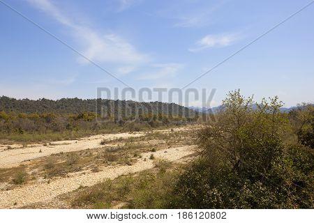Kalesar Nature Reserve In India