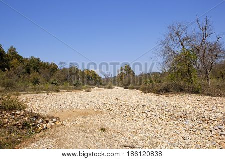 Dry River Bed And Mixed Woodland