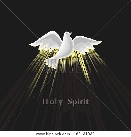 Holy Spirit icon. Hand drawn style. Christian holiday Pentecost Trinity Sunday concept. Church sacrament biblical symbol of flying spiritual dove. Pentecostal greeting. Vector religious illustration