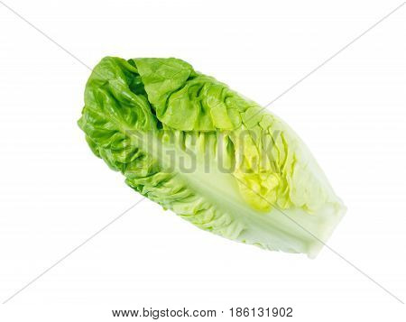Baby cos lettuce salad head isolated on white