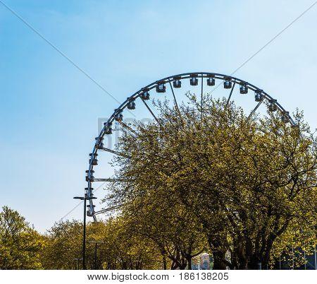 Big Wheel In The Seaside Village, In The Background Green Plants, Big Tree