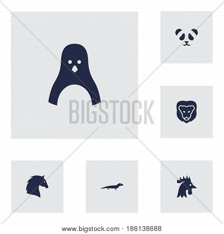 Set Of 6 Alive Icons Set.Collection Of Rooster, Bear, Steed And Other Elements.