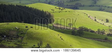 Elevated Panoramic View of British Countryside at Spring