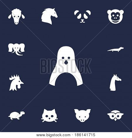 Set Of 13 Beast Icons Set.Collection Of Lamb, Steed, Diver And Other Elements.