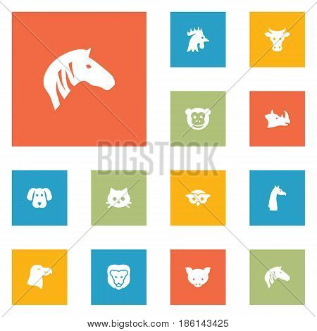 Set Of 12 Brute Icons Set.Collection Of Rooster, Wildcat, Rhinoceros And Other Elements.