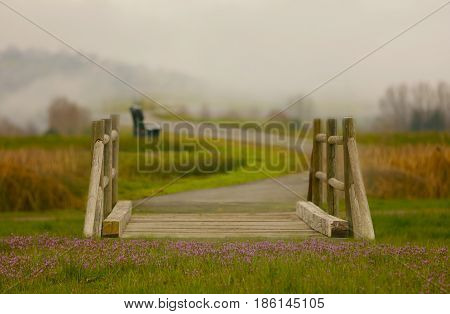 A fairy tale bridge with purple wildflowers and a path that meanders into the fog.