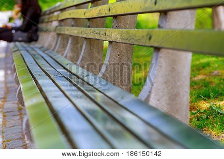 Bench in the local park Bench in the summer park with