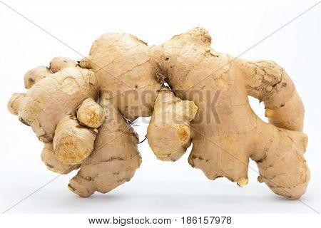 Ginger on white background fresh root ginger